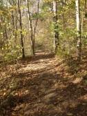 WV Trail