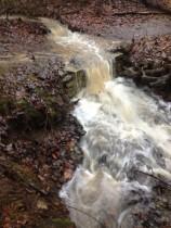 Creek Flood 3