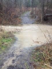 Creek Flood 4