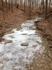 Small Frozen Creek