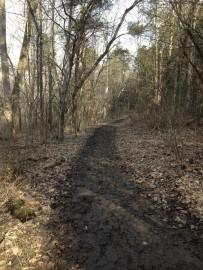 GTown Mud