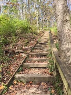 Narrows Steps